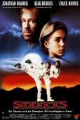 Subtitrare Sidekicks