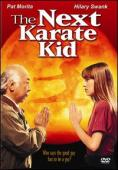 Subtitrare The Next Karate Kid