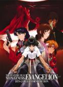 Subtitrare Shin seiki evangerion (Neon Genesis Evangelion)