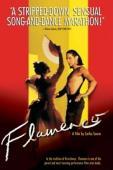 Subtitrare Flamenco (de Carlos Saura)