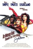 Subtitrare To Wong Foo Thanks for Everything, Julie Newmar