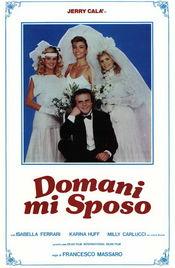 Subtitrare I'm Getting Married Tomorrow (Domani mi sposo)