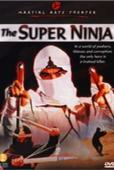 Subtitrare The Super Ninja