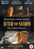 Subtitrare After the Storm