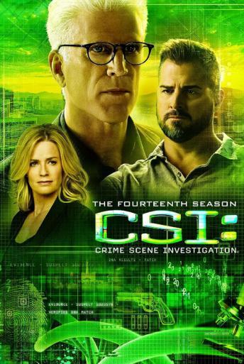Subtitrare CSI: Crime Scene Investigation - Sezonul 13