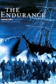 Subtitrare The Endurance