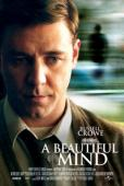 Subtitrare A Beautiful Mind