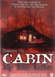 Subtitrare Return to Cabin by the Lake