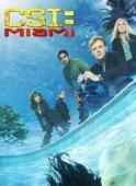Subtitrare CSI: Miami - Sezonul 1
