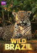 Subtitrare BBC - Wild Brazil
