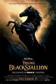 Subtitrare The Young Black Stallion