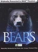 Subtitrare Bears