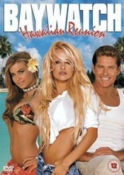 Subtitrare Baywatch: Hawaiian Wedding