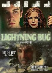 Subtitrare Lightning Bug