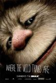 Subtitrare Where the Wild Things Are
