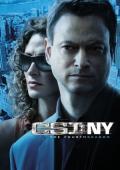 Film CSI: NY