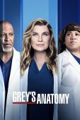 Trailer Grey's Anatomy