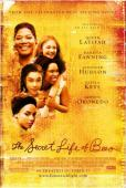 Subtitrare The Secret Life of Bees