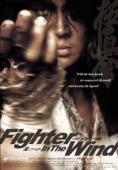 Subtitrare Fighter in The Wind (Baramui Fighter)
