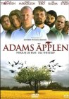 Trailer Adams æbler
