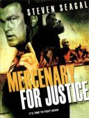 Subtitrare Mercenary for Justice