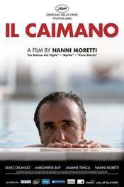 Subtitrare Il Caimano (The Caiman)