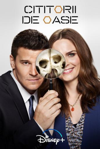 Subtitrare Bones - Sezonul 12