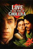 Subtitrare Love in the Time of Cholera
