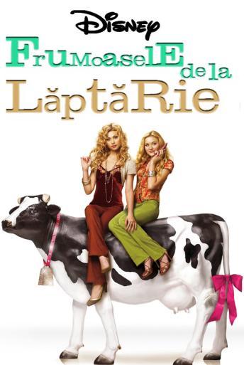 Trailer Cow Belles