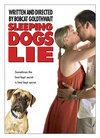 Subtitrare Stay (Sleeping Dogs Lie)