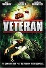 Subtitrare The Veteran