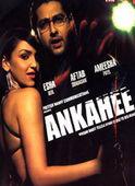 Subtitrare Ankahee