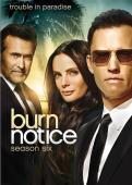 Subtitrare Burn Notice - Sezonul 1