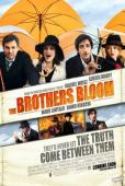 Subtitrare The Brothers Bloom