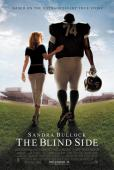 Subtitrare The Blind Side