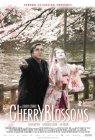 Trailer Kirschblüten - Hanami