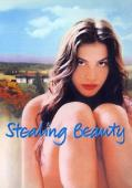 Subtitrare Stealing Beauty