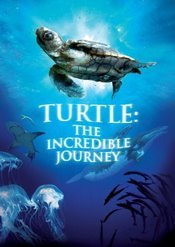 Subtitrare Turtle: The Incredible Journey