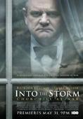 Subtitrare Into the Storm