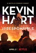 Subtitrare Kevin Hart: Irresponsible