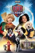 Film Pup Academy