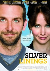 Subtitrare Silver Linings Playbook