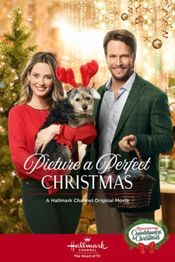 Subtitrare Picture a Perfect Christmas