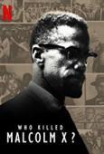 Subtitrare Who Killed Malcolm X? - Sezonul 1