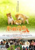 Subtitrare A Tale of Mari and Three Puppies