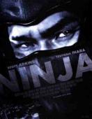Subtitrare Ninja