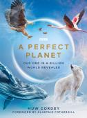 Subtitrare A Perfect Planet - Sezonul 1