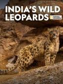 Subtitrare Indias Wild Leopards