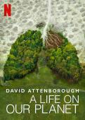 Subtitrare David Attenborough: A Life on Our Planet