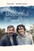 Subtitrare Beautiful Boy